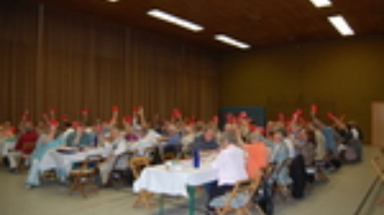 Delegierte auf dem Unterbezirksparteitag